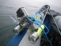 GoPro mount with torches